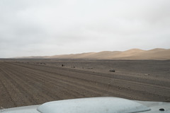 Namibia-2068 (system slave) Tags: africa namibia anotherplanet barren dunes ontheroad skeletoncoast systemslave