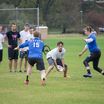 "<b>Alumni Ultimate Frisbee</b><br/> Homecoming 2017 Men's Ultimate Frisbee Alumni game. Photo by Rachel Miller '18<a href=""//farm5.static.flickr.com/4508/23889537308_f648ea2c96_o.jpg"" title=""High res"">∝</a>"