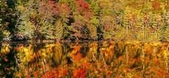 Spot Lake Shore Reflections (Cole Chase Photography) Tags: fallreflections spotlake sunrise autumn upperpeninsula michigan