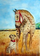 Dog and horse, by Raul M. - DSC02049 (Dona Minúcia) Tags: art painting watercolor study paper animal cute dog horse sky arte pintura aquarela cão cachorro cavalo friend amigo gracinha céu