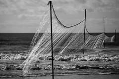 seidiges Gewand (StellaMarisHH) Tags: europa dänemark nordsee nordseeküste meerr strand netze fischerei grau sw bw canon canoneos5dmkiv eos5dmkiv 5dmkiv tamron tamron70200 70200 photoscape blavand