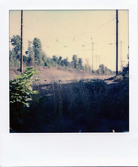 Tracks (m.ashe7) Tags: maryland trains tracks railway railroad polaroid sx70 polaroidoriginals instantfilm