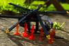 HELO DOWN (LegoInTheWild) Tags: moc lego afol helicopter littlebird army