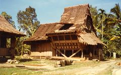 Hilisimaetano, Nias, 1980 (Elios Amati) Tags: eliosamati indonesia nias sumatra traditionalhouse