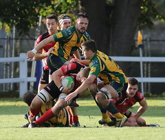 840A5588 (Steve Karpa Photography) Tags: henleyhawks henley redruth rugby rugbyunion game sport competition outdoorsport