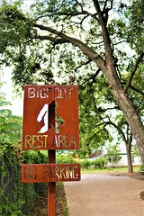 Photo With Signs (Photosintheattic (Devy)) Tags: sign tree bigfoot noparking flickr restarea trees reststop