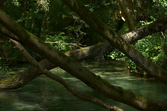 rivier1
