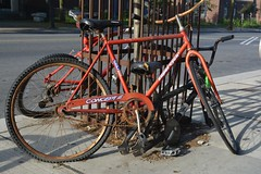 Abandoned bicycles (hogtown_blues) Tags: toronto ontario canada bloordufferin bloorstreetwest bloorstreet bicycles