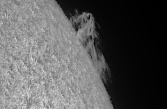 Prominence Quark-Lunt LS50F Ha D153 F8 4xPM on October 7 2017 PDT_09h44m48s-0513_L_g4_ap208 (Photon_chaser) Tags: sun prominences protuberance protuberances prominence alpha achromat asi andover astrophotos anover25mmblackingfiltermountedinthenosepieceoftelevue4xpowermatetelecentric quark zwo zwoasi174mmcamera etalon 3d 3dprintedtubeassembly 3dprintedtube erf lunt ls50f baader baader110mmderf