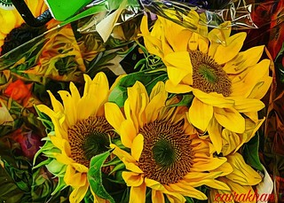 Yay found them.. Dear sunflowers..