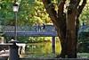 Dulce otoño (Franco D´Albao) Tags: francodalbao dalbao nikond60 parque park otoño autumn people lago lake castrelos vigo tree