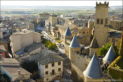 Olite (lautada) Tags: olite navarra nafarroa castillo palacio real euskalherria