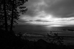 _7500768_2_DxO (Ron Biedenbach) Tags: ocean pacific trees water park olympic national shore weather blackandwhite