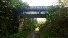Bridge under Old Mill Lane, Thurgoland   (Deepcar -  Dunford  old railway)  October 2017 (dave_attrill) Tags: old mill lane bridge wortley allweather gantry romtickle deepcar station building great central railway electrified woodhead sheffield victoria manchester picadilly closed 1970 1955 stocksbridge engine transpennine upper don trail penistone wadsley neepsend dunford thurgoland tunnel oxspring barnsley junction huddersfield cycleway bridleway footpath remains stopping electrification concrete support oughtibridge oughty platform overgrown stationmasters house ticket office bullhouse green millhouse hazelhead 1983 wood tree branches volunteering outdoor