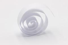 Paper Spiral (Helen Orozco) Tags: macromondays spiral paper strip white hmm coil swirl whiteonwhite canonrebelsl1 roll highkey