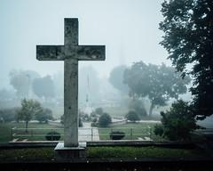 IMG_8865-Edit (daversa) Tags: auburn fog ny veteransmemorialpark pomeroypark