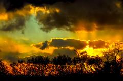 Sunset; across a farmer's fields... (tomk630) Tags: nature shenandoah farmland light colors beauty trees sunset