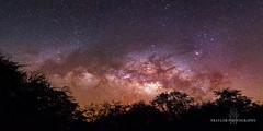 Hawaiian Milky Way (Traylor Photography) Tags: night tamron nikon milkyway waikaloa fairmontorchid kona stars hawaii petroglyph bigisland maunilei constellation waimea unitedstates us