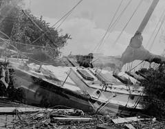 Double exposure of Hurricane Irma aftermath (Jacob Gralton) Tags: black white film ilford hp5 4 by 5 4x5 large format photography street darkroom bw monochrome hurricane irma