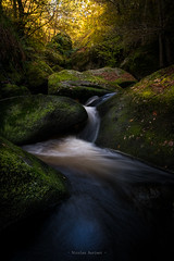 Fairy river (ForgottenMelodies) Tags: bretagne brittany finistère france huelgoat travel autumn filter forest green k3 landscape longexposure nd paysage pentax poselongue rocks sky sun trees trip tripod yellow fairy legend river forgottenmelodies nicolasauvinet
