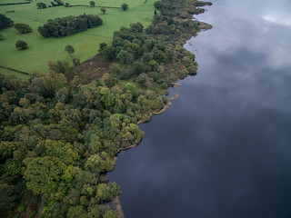 Bassenthwaite Lake Shoreline
