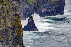 Cliffs of Moher Ireland-3 (Yasu Torigoe) Tags: viewoftheruggedcliffsofmoherinclarecountyireland countyclare ireland ie