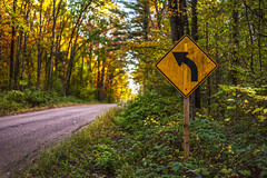(Daniel000000) Tags: turn sign curve road trees colors autumn fall wisconsin midwest bokeh nature tree green nikon d750 slr dslr light path fun america country countryside contrast rural art yellow landscape old orange