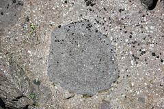 Porphyritic rhyodacite (Holocene; Chaos Jumbles Landslide, Lassen Volcano National Park, California, USA) 4 (James St. John) Tags: rhyodacite chaos jumbles holocene landslide avalanche lassen volcano volcanic national park california