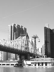 The Queensboro Bridge (failing_angel) Tags: 020417 usa newyork rooseveltisland manhattan queensborobridge 59thstreetbridge edkochqueensborobridge gustavlindenthal henryhornbostel