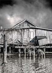 The Old Cannery (Chatham Sound) Tags: britishcolumbia canada 124 nikond5 monochrome