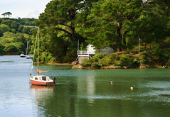 St. Just in Roseland (maureen bracewell) Tags: cornwall july stjust boat sea summer yacht stjustinroseland cannon maureenbracewell trees landscape water calm boathouse peaceful england uk fantasticnature