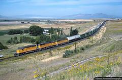 Hogs & Pigs in Tooele Valley (jamesbelmont) Tags: railway unionpacific uprr erda nplat tooelevalley greatsaltlake utah emd sd402 sd60m sd50 hogx hogcars trailers autos