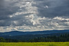 3Layers (Rene'D.) Tags: 2017 waldviertel austria lower forest forestquarter quarter sky blue cloud clouds cloudy