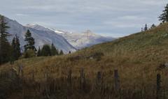 vallon d'Arby (bulbocode909) Tags: valais suisse vallondarby latzoumaz montagnes nature automne paysages arbres alpages nuages bleu