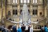_IMG2053 (eric geers) Tags: londen engeland verenigdkoninkrijk bluewhale supertakumar50mmf14 london naturalhistorymuseum museum