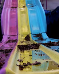 No One Sliding But the Rain (dsgetch) Tags: sellwood sellwoodportland portland theoaks oakspark theoaksamusementpark amusementpartk slide carnivalslide carnivalride amusementparkride offseason cascadia pacificnorthwest pnw oregon autumn autumnleaves waterreflection
