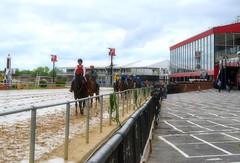 "2017-05-25 (44) r4 post parade (JLeeFleenor) Tags: photos photography md maryland marylandracing marylandhorseracing pimlico baltimore jockey جُوكِي ""赛马骑师"" jinete ""競馬騎手"" dżokej jocheu คนขี่ม้าแข่ง jóquei žokej kilparatsastaja rennreiter fantino ""경마 기수"" жокей jokey người horses thoroughbreds equine equestrian cheval cavalo cavallo cavall caballo pferd paard perd hevonen hest hestur cal kon konj beygir capall ceffyl cuddy yarraman faras alogo soos kuda uma pfeerd koin حصان кон 马 häst άλογο סוס घोड़ा 馬 koń лошадь"