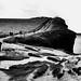 Wet Cliffs of Moher