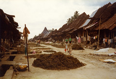 Hilisimaetano, Nias, 1980 (Elios Amati) Tags: eliosamati indonesia nias sumatra traditionalhouse laundry