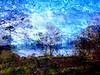 Ardinning_Autumn_sub_0012 (troutcolor) Tags: imagemagick subtract autumn ardinning