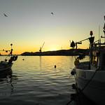 Pescherecci al tramonto (pt. 1) thumbnail