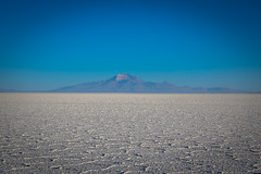 A look across the salt flats at Isla Incahuasi.