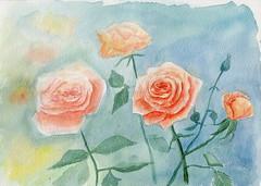 Bouquet de rose (ybipbip) Tags: paint painting pintura peinture water watercolor watercolour aquarelle aquarell akvarell acuarela flower flowers roses
