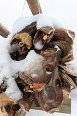 IMG_2593 (alessandro orfanù) Tags: norway lofoten vesteralen hurtigruten winter snow northernlight