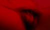 RI6 (Jose Vallejo Z) Tags: movimiento hombre intimidad habitación room red rojo ritmo erotico barrido cuerpo man