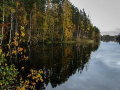 Lake Vehkajärvi colors (Timo Halonen) Tags: ylävirta kasiniemi padasjoki häme finland vehkajärvi ruska fall autumn canon ixus 185