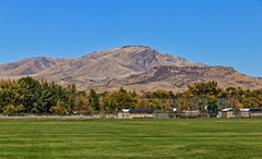 Squaw Butte From Gem Island Sport Complex (http://fineartamerica.com/profiles/robert-bales.ht) Tags: fb forupload gemcounty haybales idaho landscape mountain mountains people photo places projects scenic states emmett sweet squawbutte treasurevalley emmettvalley trees thebutte beautiful awesome magnificent peaceful wow town butte gem river payetteriver southwesternidaho reflections water scenicbiway blue whitewater picturesque robertbales beauty horizontal panoramic usa softball baseball soccer greetingcards sportcomplex