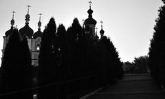 Photos taken by Andrey Andriyenko (12)