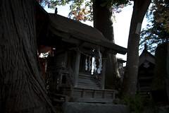 0379 (Shota Fukuda) Tags: 日本 japan 岩手県 遠野 神社 shintoshrine 遠野郷八幡宮