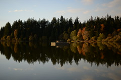 Fall Evening by Lost Lagoon (Graham Fair) Tags: vancity stanleypark lostlagoon almost